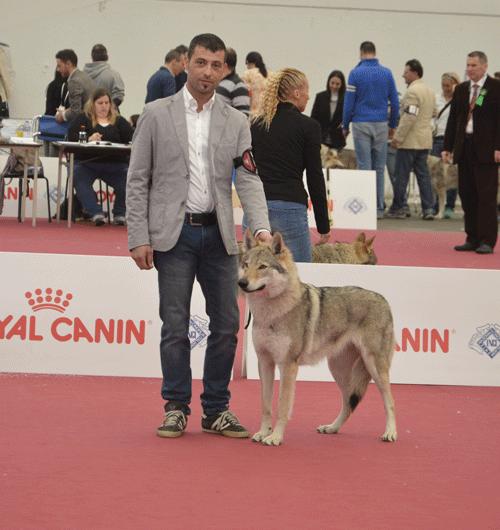 Expo Reggio Emilia